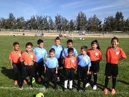 A group of 10 kids in soccer uniforms.